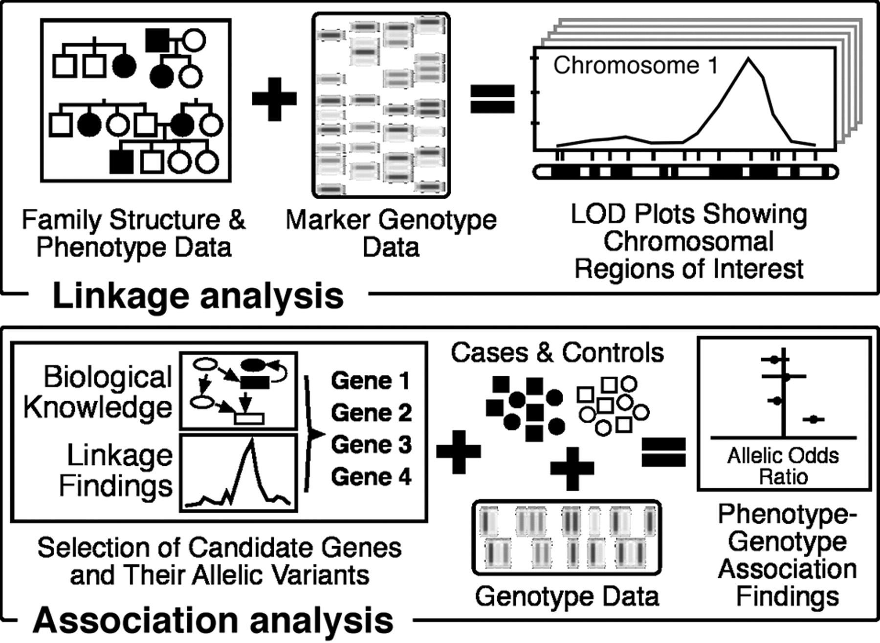 Summary Of The American Heart Association S Scientific Statement On The Relevance Of Genetics And Genomics For Prevention And Treatment Of Cardiovascular Disease Arteriosclerosis Thrombosis And Vascular Biology