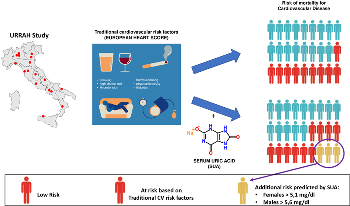 Identification of the Uric Acid Thresholds Predicting an Increased ...