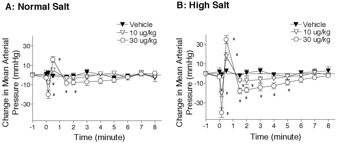 VR1-Mediated Depressor Effects During High-Salt Intake | Hypertension