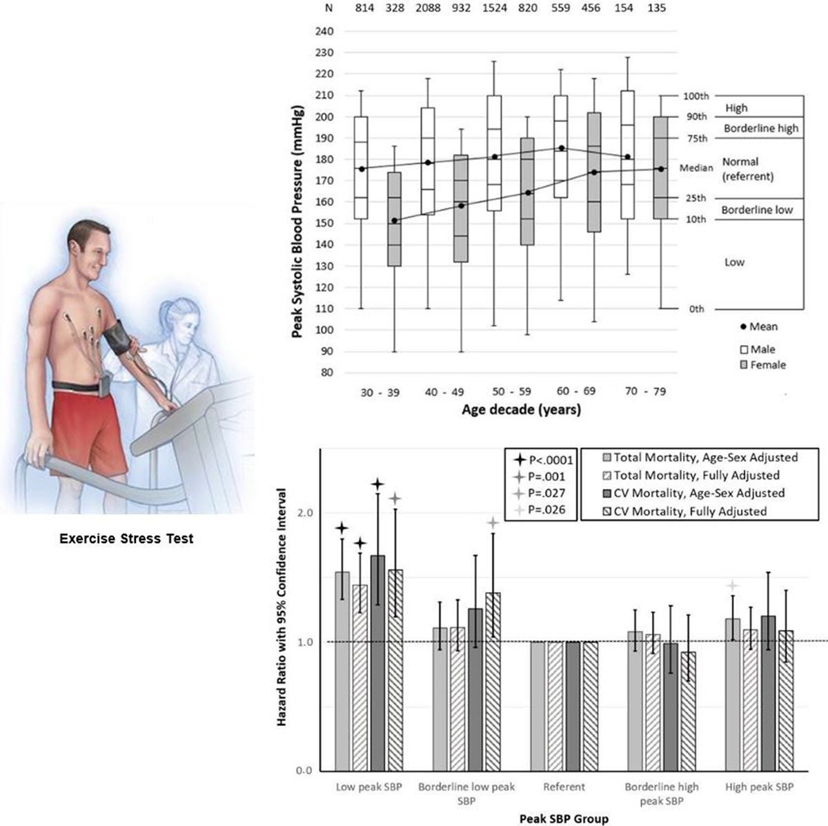 Peak Systolic Blood Pressure During the Exercise Test Reference ...