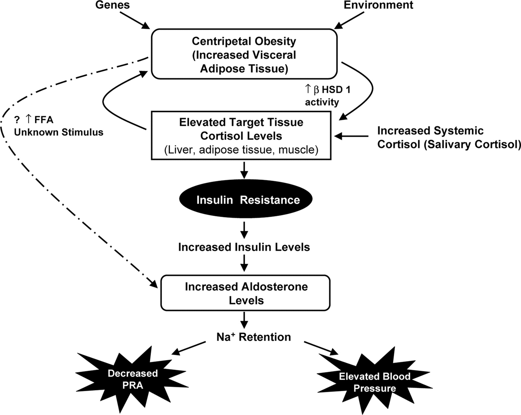 Steroid and hypertension effects of steroids on professional athletes