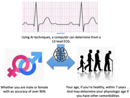 Age and Sex Estimation Using Artificial Intelligence From