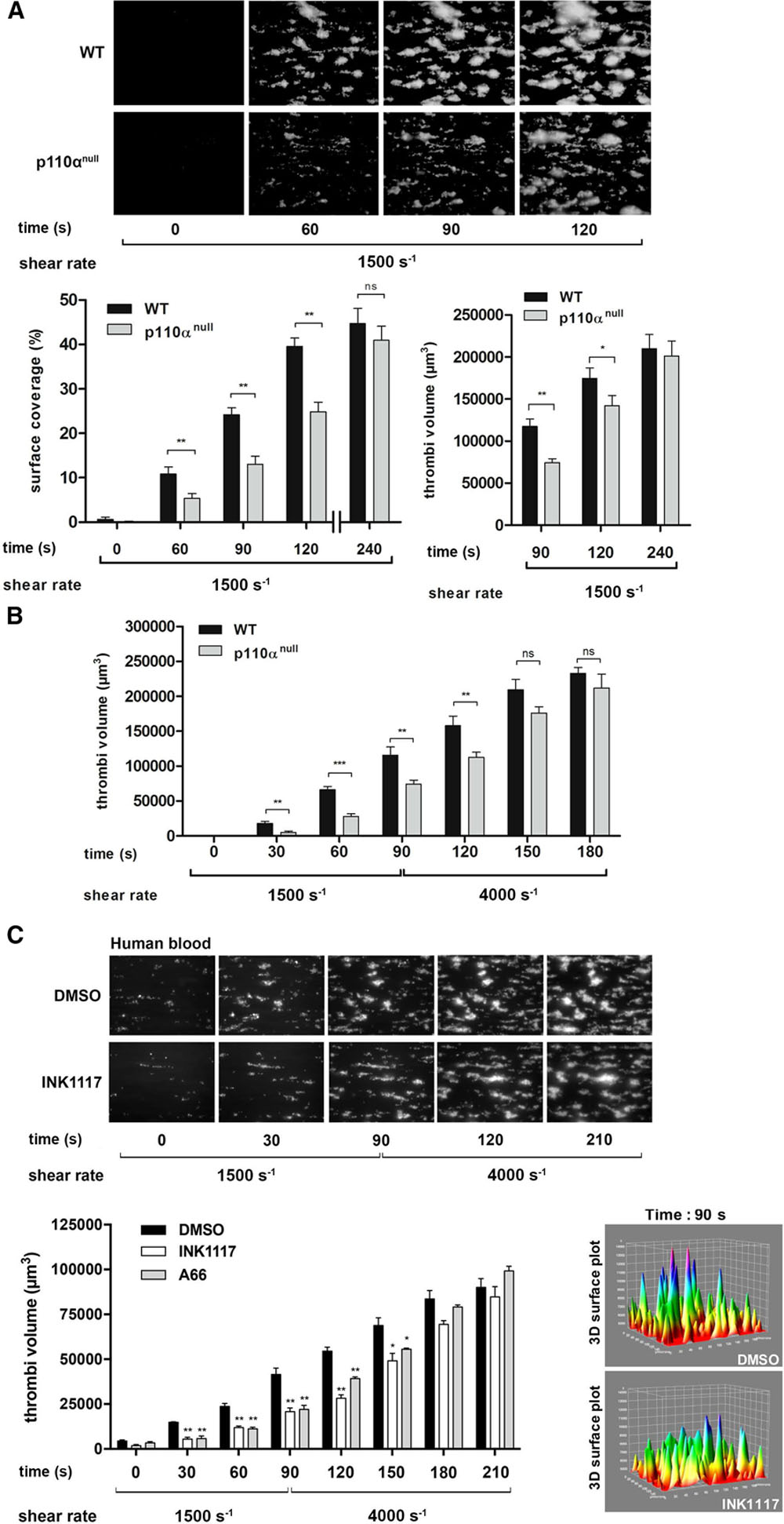 Impact of PI3Kα (Phosphoinositide 3-Kinase Alpha) Inhibition