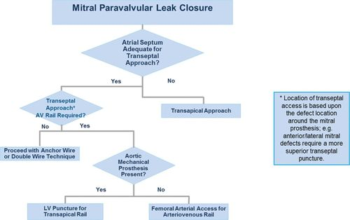 Techniques and Outcomes for the Treatment of Paravalvular