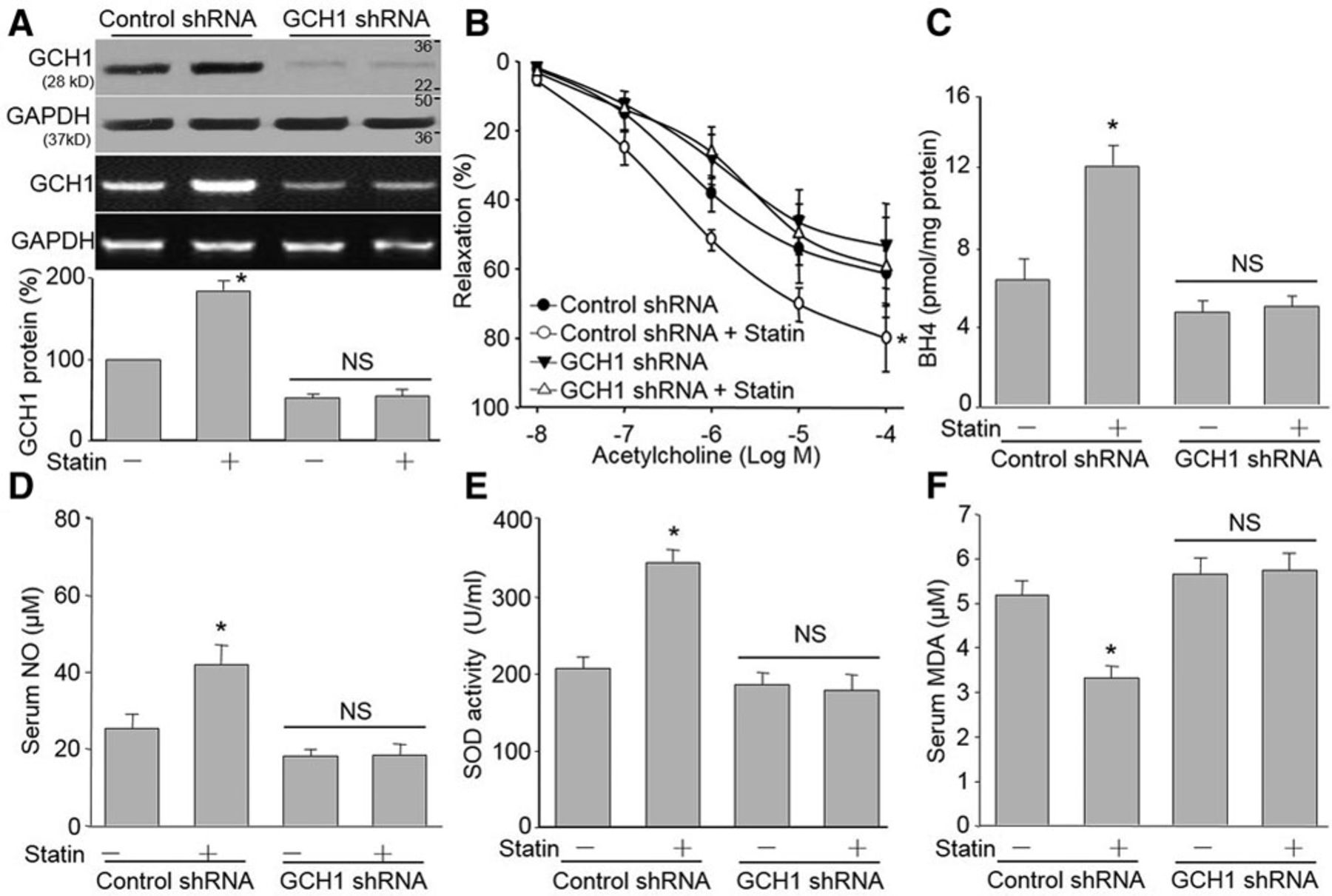 Inhibition of Aberrant MicroRNA-133a Expression in