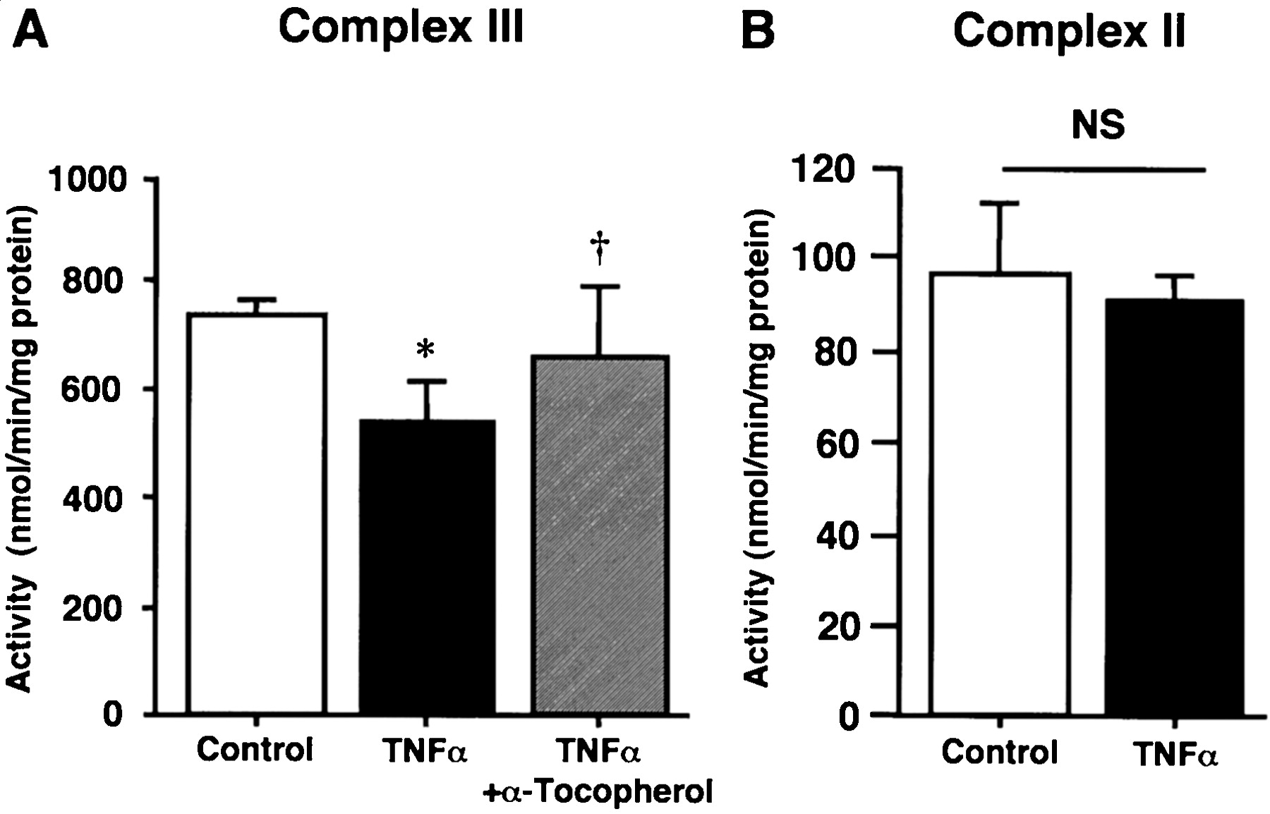 Oxidative Stress Mediates Tumor Necrosis Factor-α–Induced