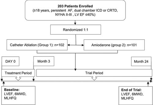 Ablation Versus Amiodarone for Treatment of Persistent