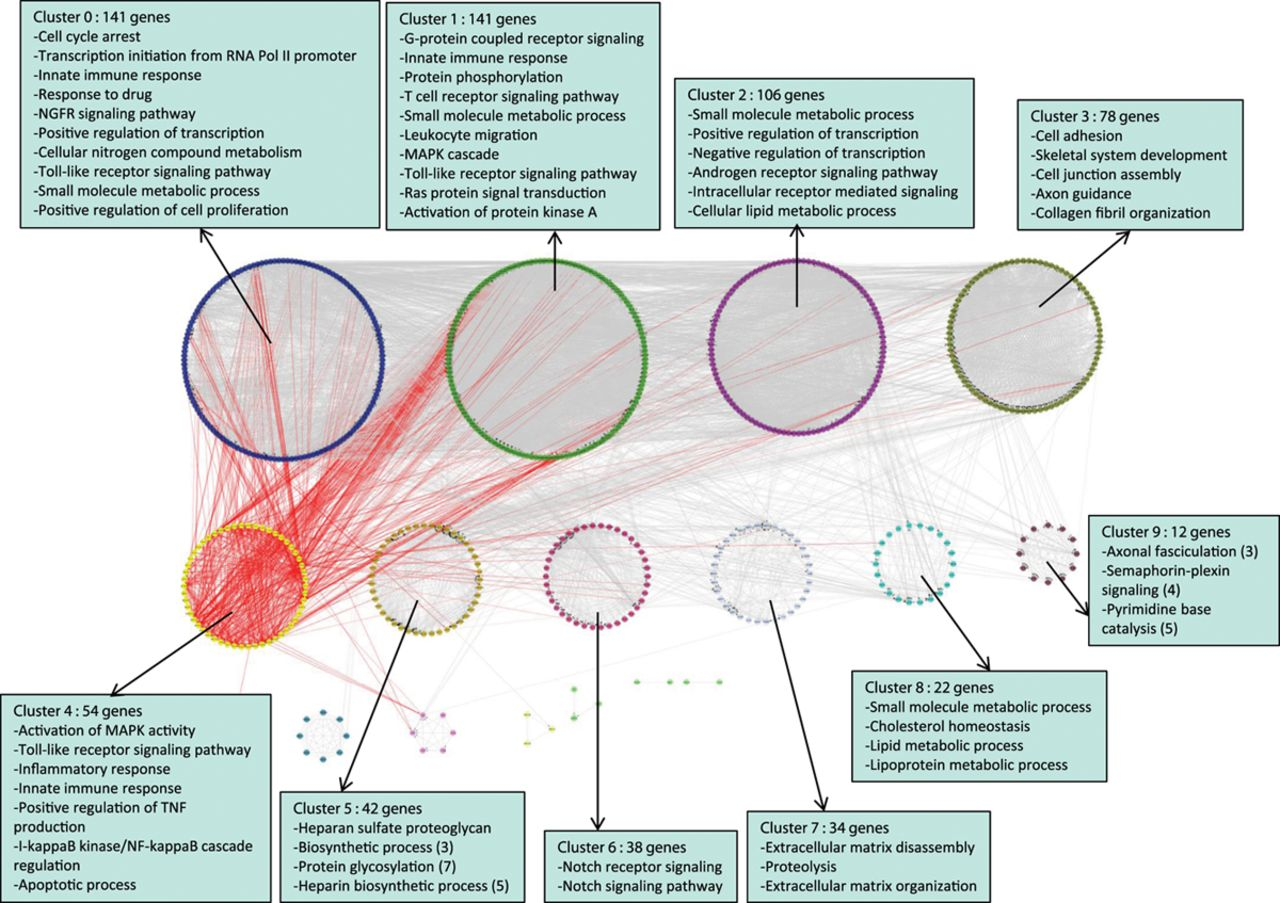 Systems Genetics Analysis of Genome-Wide Association Study