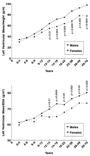 Gender Differences in Left Ventricular Growth | Hypertension