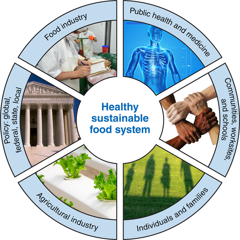 Innovation to Create a Healthy and Sustainable Food System: A