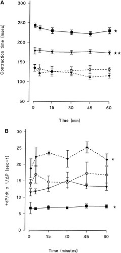 Clenbuterol Increases Stroke Power and Contractile Speed of