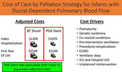 Differences in Cost of Care by Palliation Strategy for