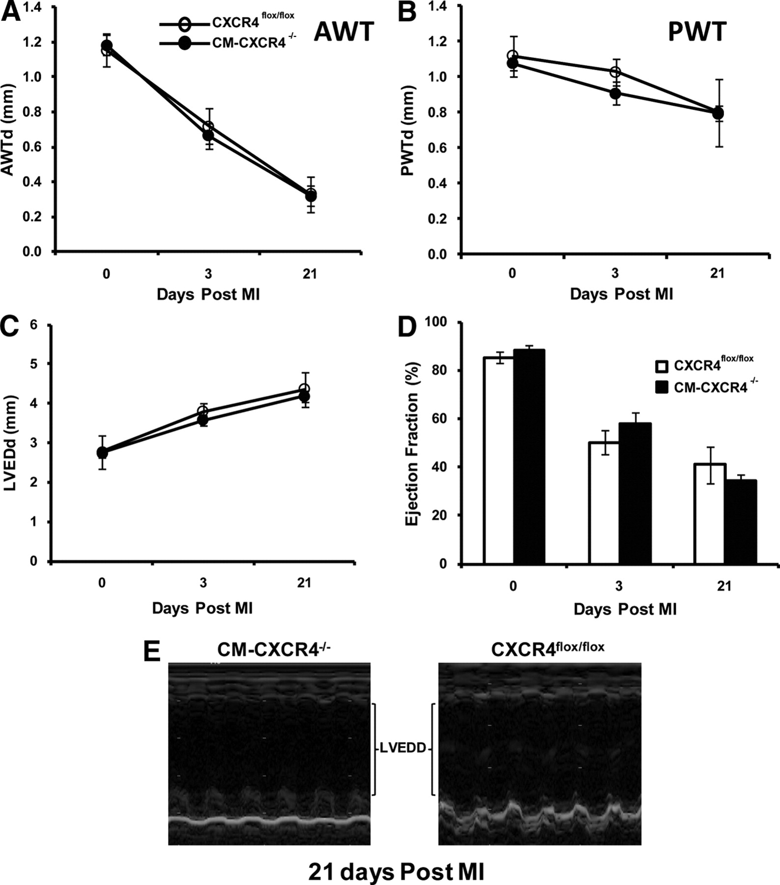 Role of Cardiac Myocyte CXCR4 Expression in Development and