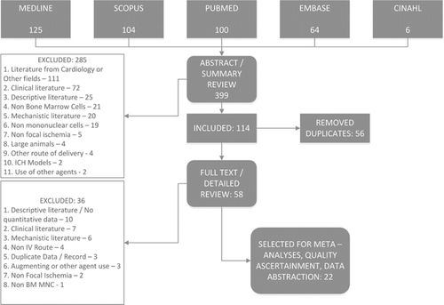 Systematic Review and Meta-Analysis of Bone Marrow–Derived