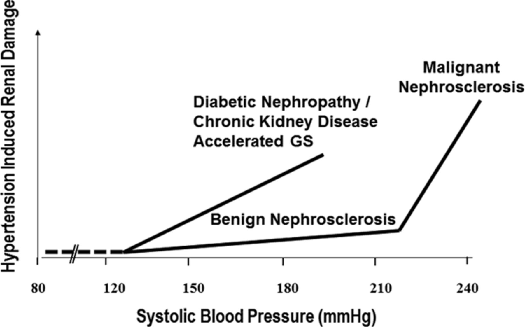 Hypertensive Kidney Injury and the Progression of Chronic
