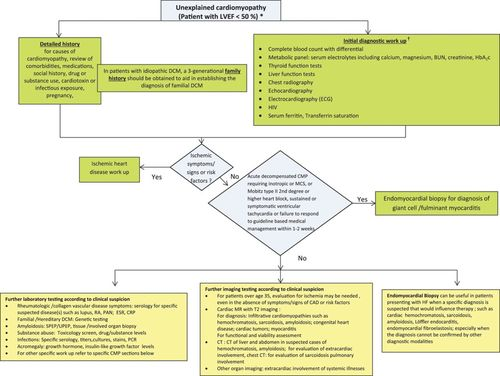 Current Diagnostic and Treatment Strategies for Specific Dilated