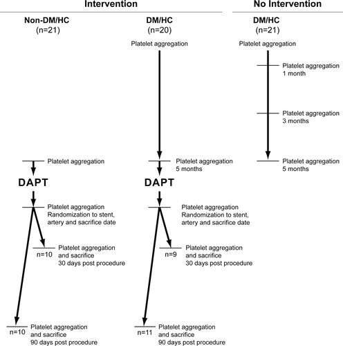 Vascular Responses To Drug Eluting And Bare Metal Stents In Diabetic