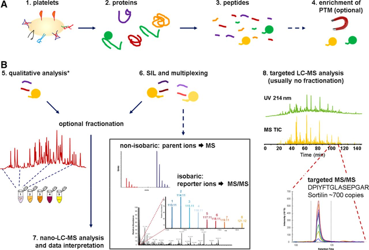 What Can Proteomics Tell Us About Platelets?   Circulation
