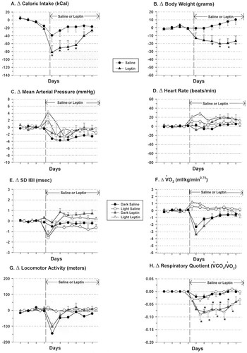 Central Leptin Infusion Attenuates the Cardiovascular and