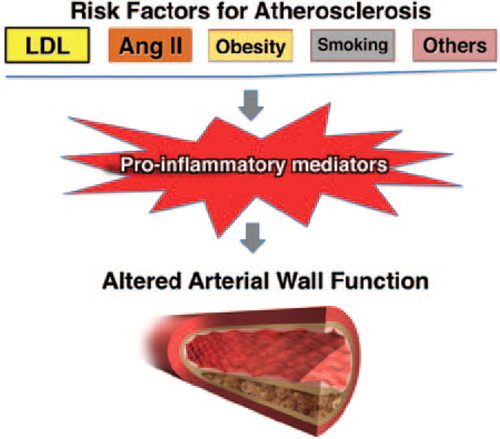 Inflammation in Atherosclerosis | Arteriosclerosis