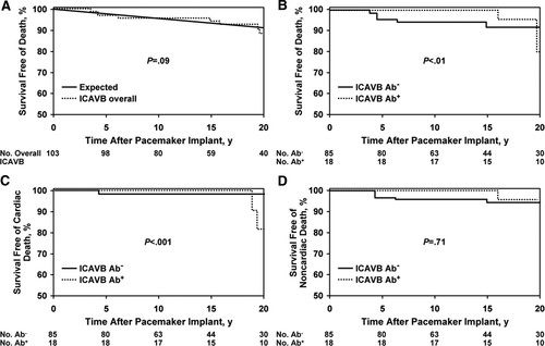 Effect of Long-Term Right Ventricular Pacing in Young Adults