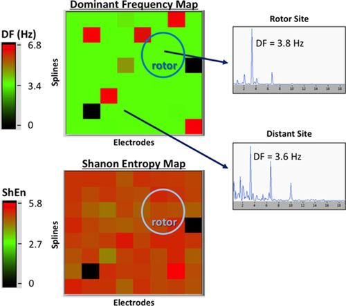 Quantitative Analysis of Localized Sources Identified by