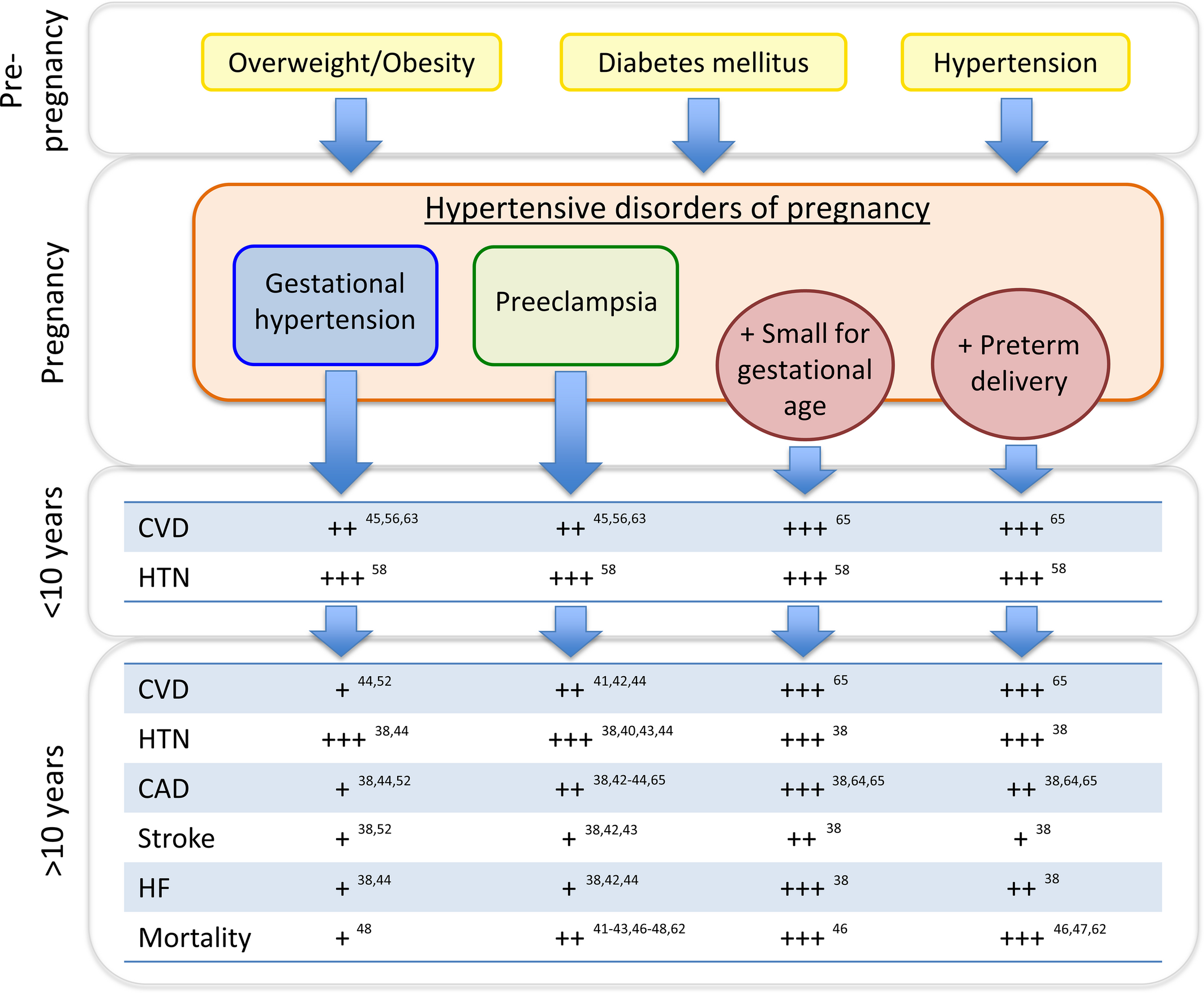 Hypertensive Disorders of Pregnancy and Future Maternal
