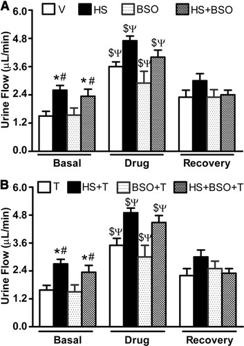Oxidative Stress Causes Renal Dopamine D1 Receptor Dysfunction and