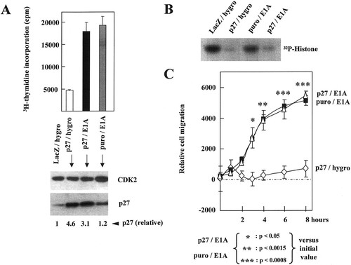 Coordinate Control of Proliferation and Migration by the p27Kip1