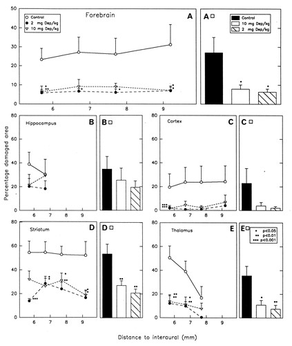 l-Deprenyl Reduces Brain Damage in Rats Exposed to Transient Hypoxia