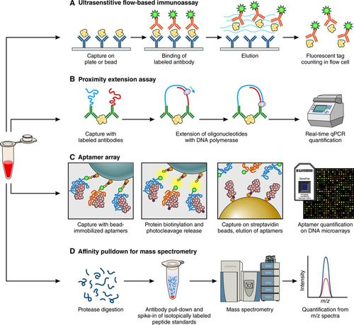 Emerging Affinity-Based Proteomic Technologies for Large