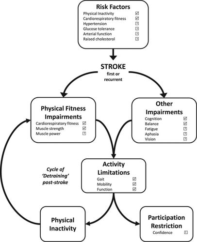 Physical Activity and Exercise After Stroke | Stroke