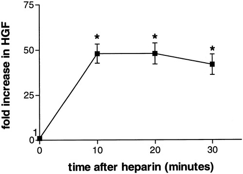 Angiotensin-Converting Enzyme Inhibition Restores Hepatocyte