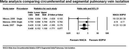 Efficacy of Catheter Ablation for Persistent Atrial