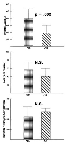 Neonatal Ischemic Neuroprotection by Modest Hypothermia Is