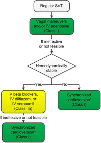 What Is Svt >> 2015 Acc Aha Hrs Guideline For The Management Of Adult Patients With