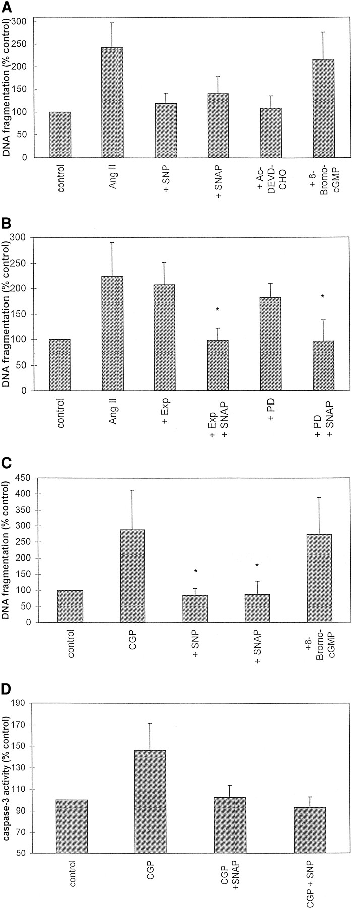 Angiotensin Ii Induces Apoptosis Of Human Endothelial Cells