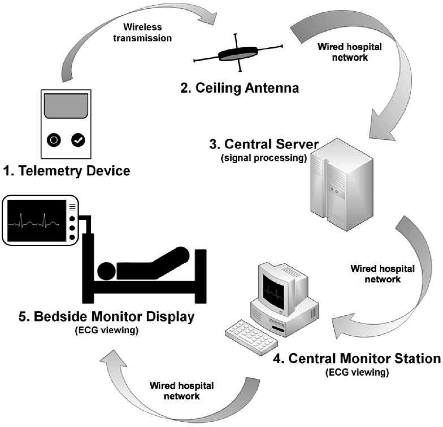 Latency of ECG Displays of Hospital Telemetry Systems
