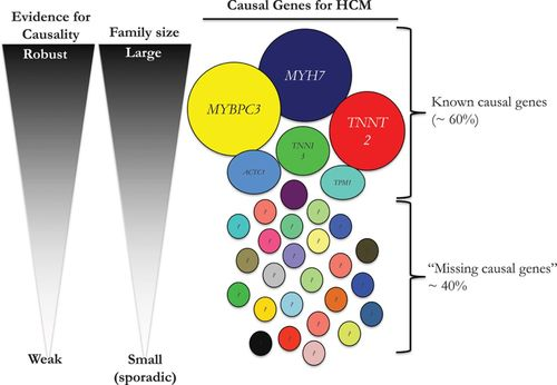 """The Case of """"Missing Causal Genes"""" and the Practice of"""