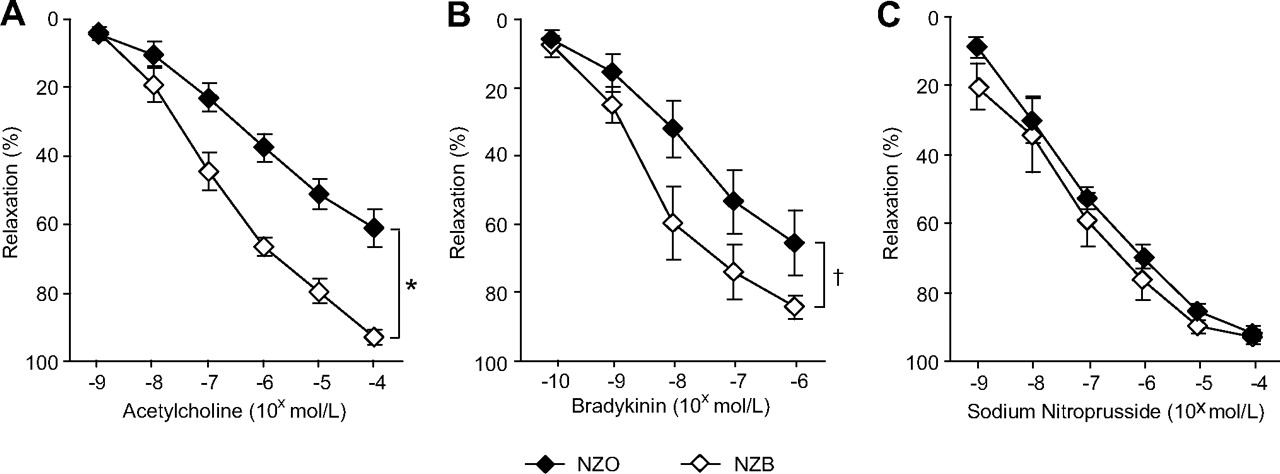 Endothelial Nitric Oxide Synthase Uncoupling and Perivascular