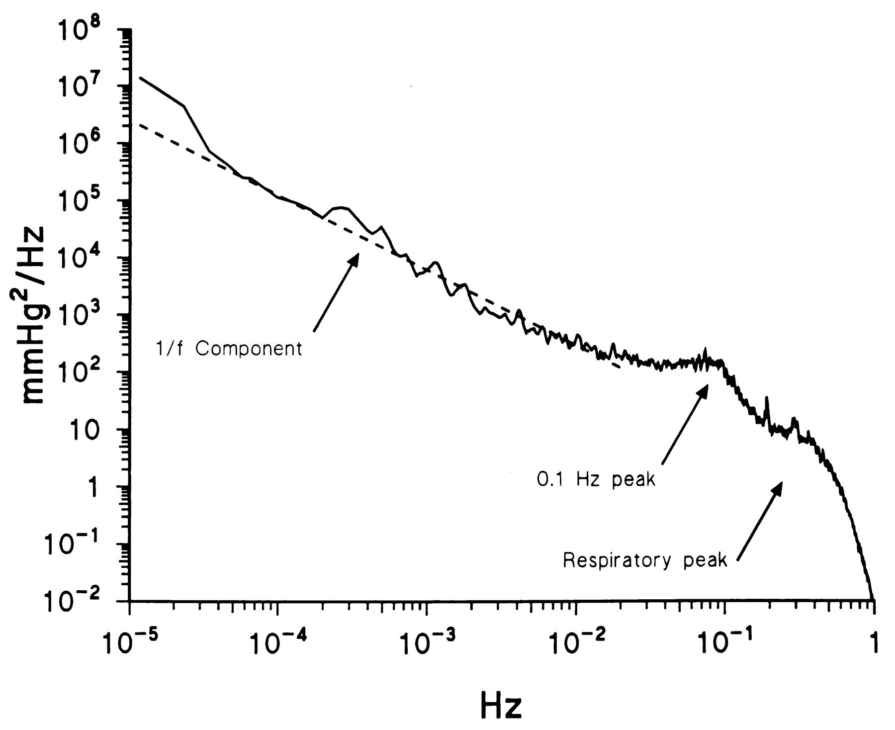 Spectral Analysis of Blood Pressure and Heart Rate