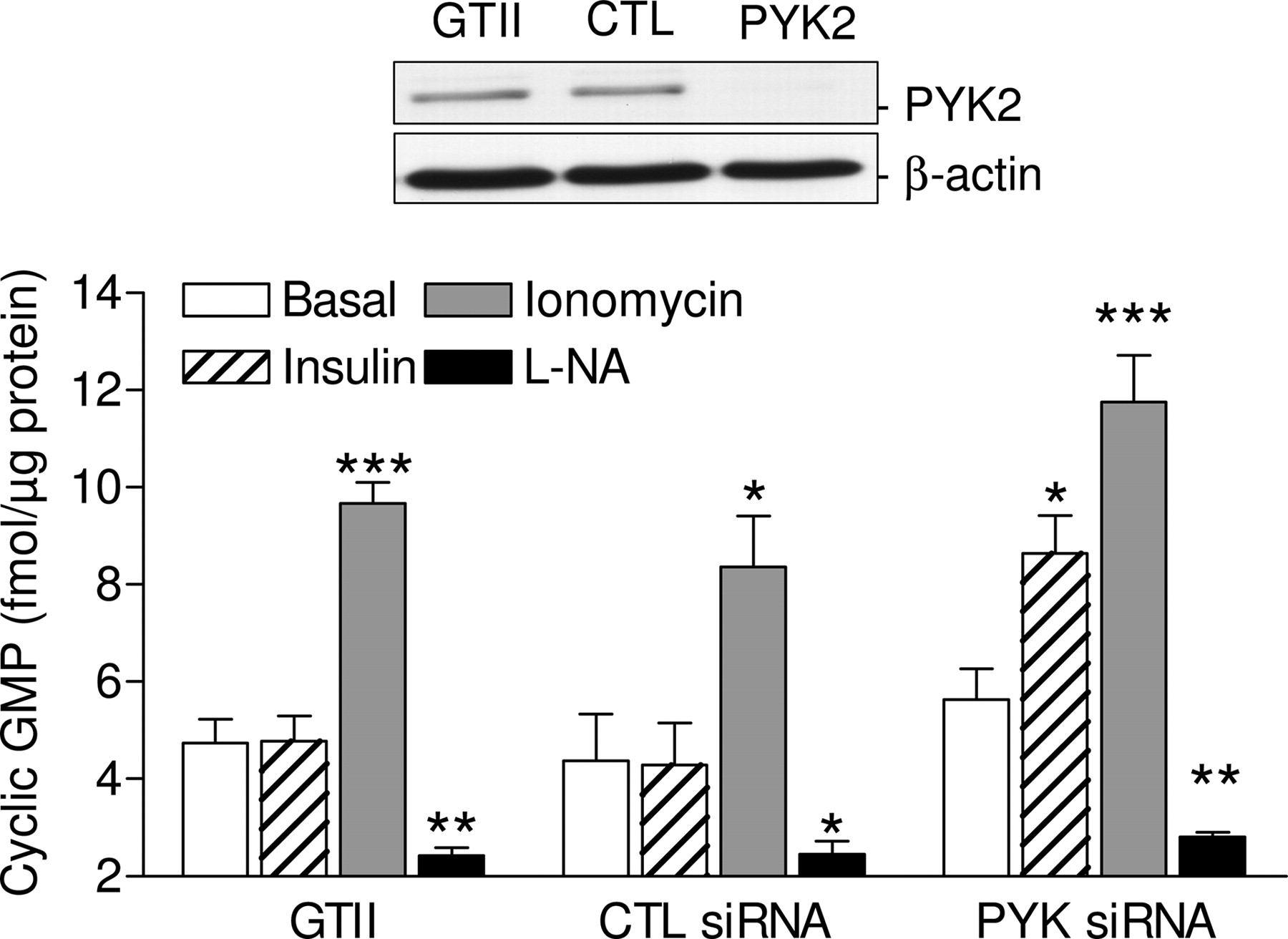 Inhibition of Endothelial Nitric Oxide Synthase Activity by Proline