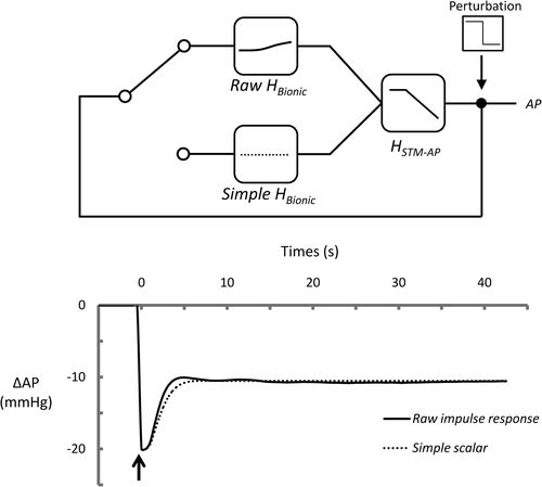 Bionic Baroreceptor Corrects Postural Hypotension in Rats