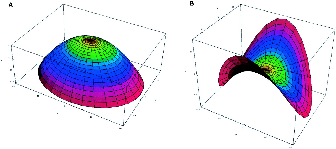 Effect of Annular Shape on Leaflet Curvature in Reducing