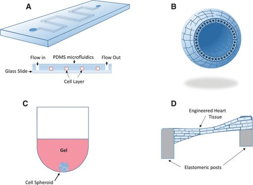 From Microscale Devices to 3D Printing | Circulation Research