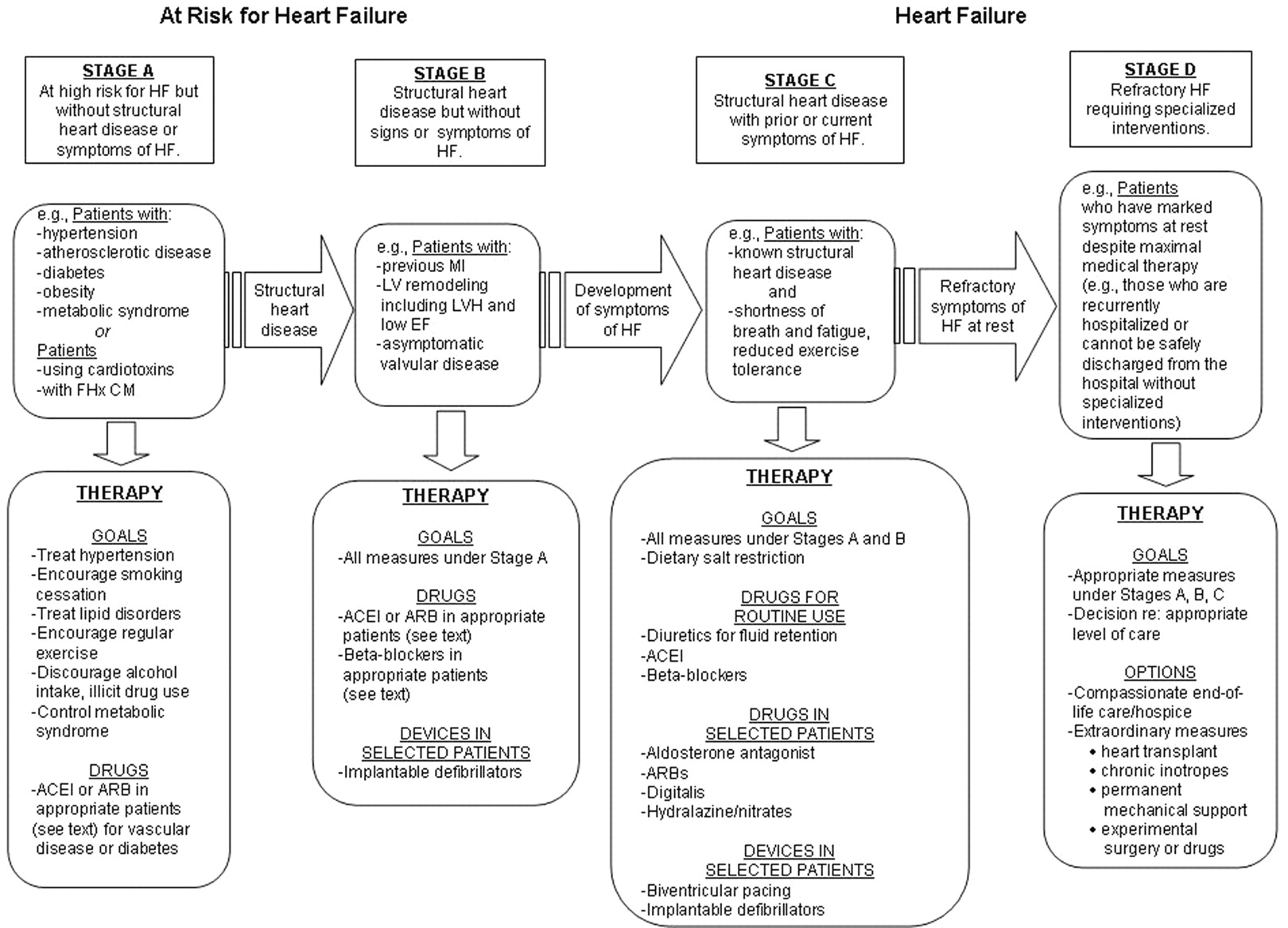 2009 Focused Update Incorporated Into the ACC/AHA 2005