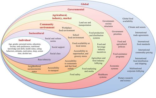 Dietary and Policy Priorities for Cardiovascular Disease, Diabetes