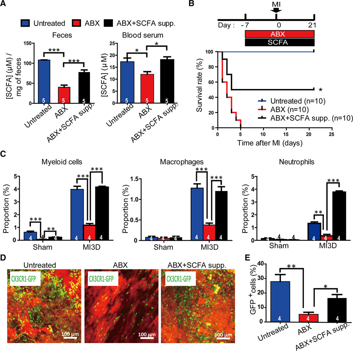 Loss of Gut Microbiota Alters Immune System Composition and