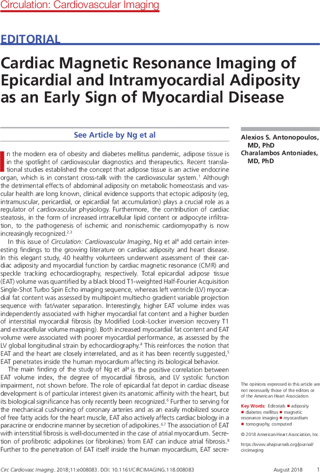 Cardiac Magnetic Resonance Imaging of Epicardial and Intramyocardial
