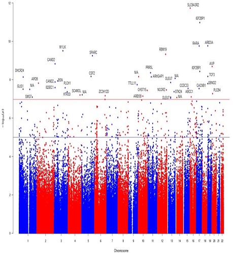 Hypertensive Disorders of Pregnancy and DNA Methylation in